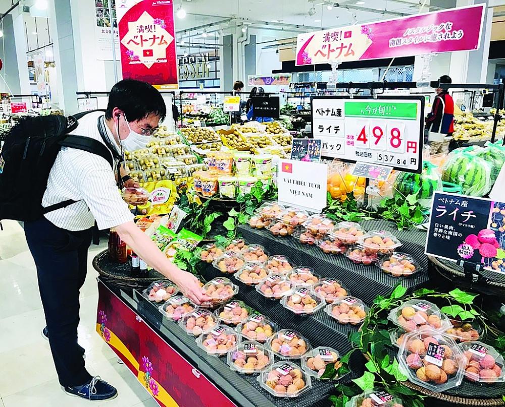 Xuất khẩu nông sản bội thu, Người tiêu dùng Nhật Bản chọn mua vải thiều Bắc Giang tại siêu thị. Ảnh: ĐÀO THANH TÙNG