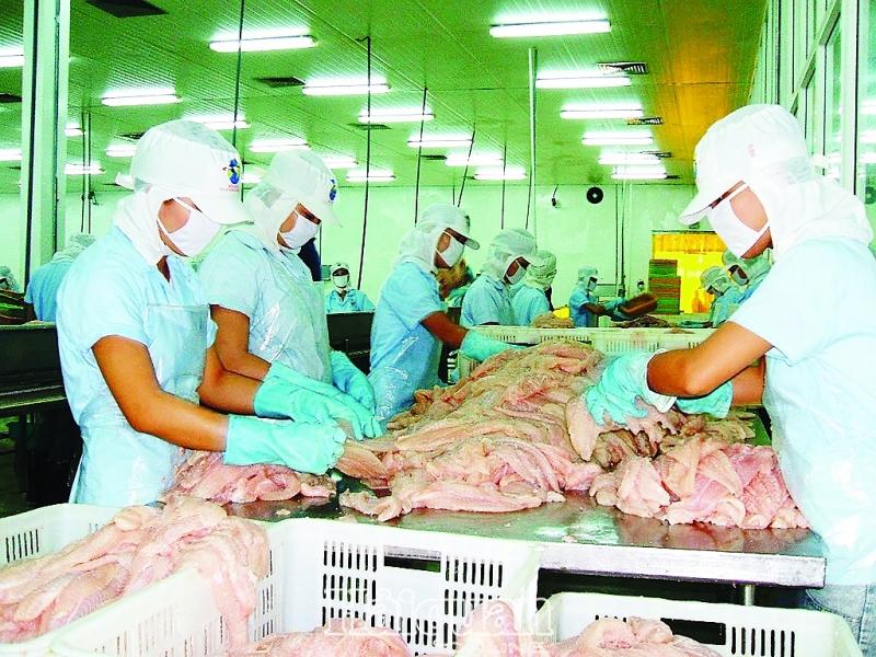 125 doanh nghiệp cá tra mở rộng kênh tiêu thụ nội địa và chế biến cá tra xuất khẩu