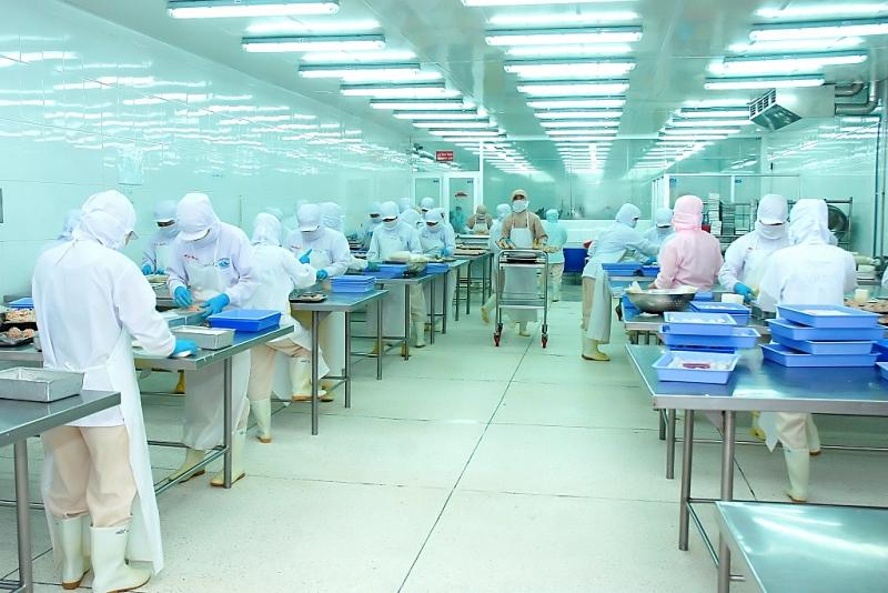 EVFTA tiếp tục tạo đà cho xuất khẩu thuỷ sản về đích, doanh nghiệp chế biến cá tra xuất khẩu. Ảnh: T.H