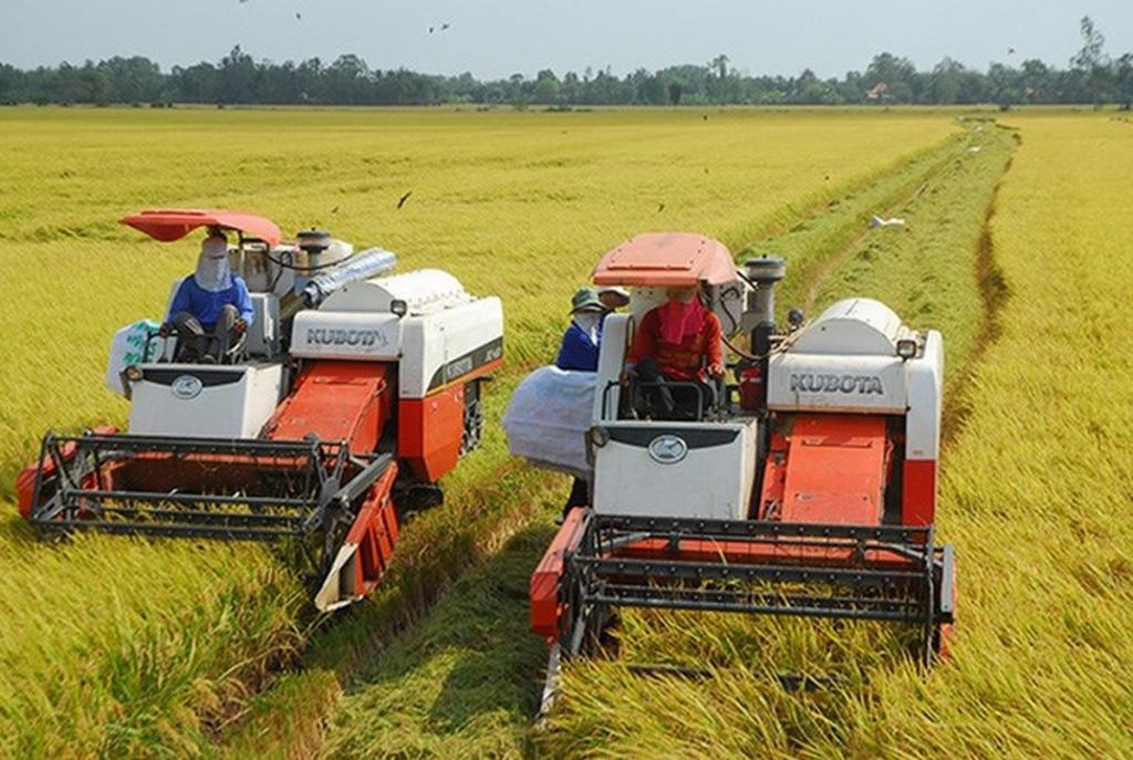 Giải đáp vướng mắc về thuế giá trị gia tăng cho doanh nghiệp sử dụng máy móc, thiết bị chuyên dùng phục vụ sản xuất nông nghiệp. Ảnh: ST.