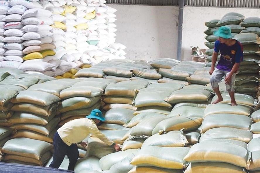 Giá gạo Việt Nam, Ấn Độ, Thái Lan đồng loạt giảm, xuất khẩu chậm lại