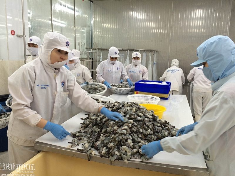 Tiềm năng xuất khẩu tôm sang Mỹ của doanh nghiệp Việt. Ảnh: N.Huế
