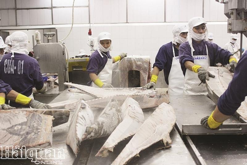 Các DN ngành thủy sản đang chế biến cho xuất khẩ phải chú trọng nguồn nguyên liệu đầu vào. Ảnh: T.H